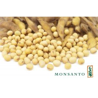 МАКСУС - соя под раундап (Monsanto)