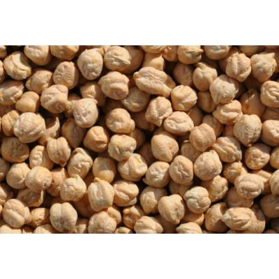 НУТ АСКАН (AZKAN) семена турецкого нута