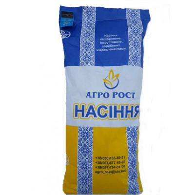 ЗЛАТСОН - высокоурожайный, засухоустойчивый гибрид подсолнечника