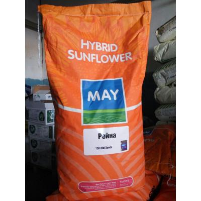 Рейна - May Seed (Турция)