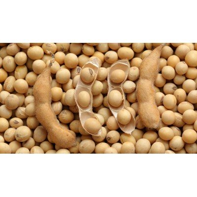 АЛМАЗ - соя (не ГМО)